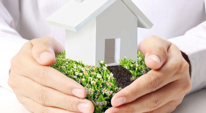 Приватизация земли: преимущества и трудности